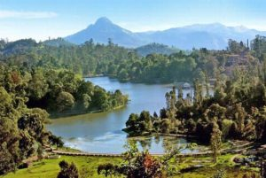 Top Three Hill Stations of South India for Honeymooning