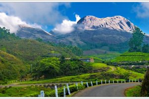 Why Head to North India When You Can Find Amazing Hill Stations in Kerala