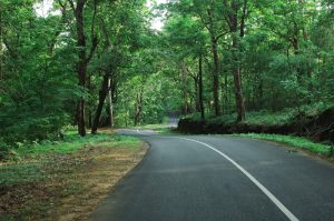 How to Plan the Perfect Road Trip between Bangalore to Kerala