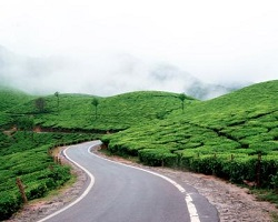 Roverholidays: Munnar tour package from Hyderabad