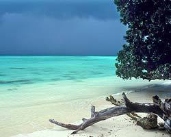 Roverholidays: Holiday in Andaman Island