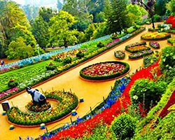 Roverholidays: Coonoor with Ooty Tour
