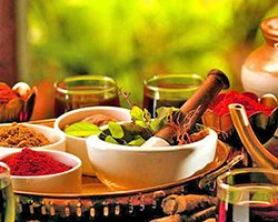 Roverholidays: South India Ayurveda Tour