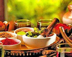 Roverholidays: South India Ayurveda Tour