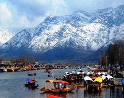 Roverholidays: Kashmir and Ladakh Tour
