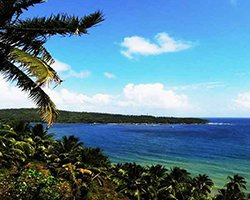 Roverholidays: Golden Triangle with Andaman Tour