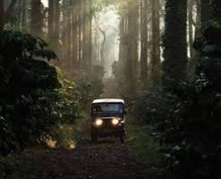 Roverholidays: Coorg Wayanad Ooty Tour Package
