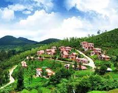 Roverholidays: Banglore Mysore Ooty and Kodaikanal