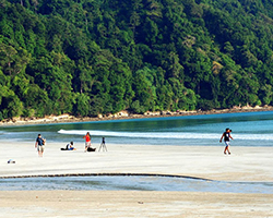 Roverholidays: Amazing Andaman Tour Package