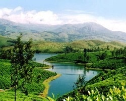 Roverholidays: Munnar Tour package from Bangalore
