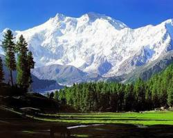 Roverholidays: Kashmir Honeymoon