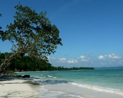 Roverholidays: Andaman Travel Package