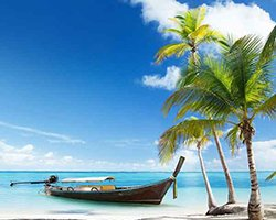 Roverholidays: Goa Beach Tour