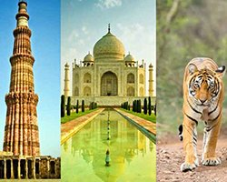 Roverholidays: Golden Triangle Tour with Wildlife