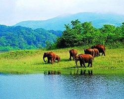 Roverholidays: Kerala Holidays