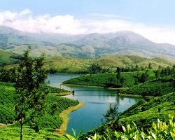 Roverholidays: Incredible Kerala Holiday
