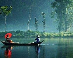 Roverholidays: Holidays in Kerala