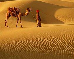 Roverholidays: Classic Rajasthan Tour