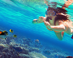 Roverholidays: Andaman Holiday Packages