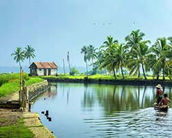 Roverholidays: Holiday Package to Kerala
