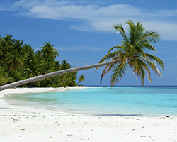 Roverholidays: Andaman Honeymoon