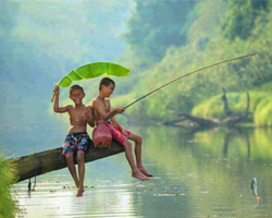 Roverholidays: Travel In Kerala