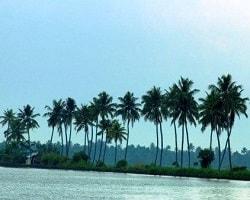 Roverholidays: Kerala Holiday Package from Delhi